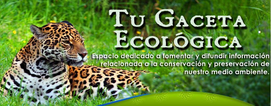 Tu Gaceta Ecológica.