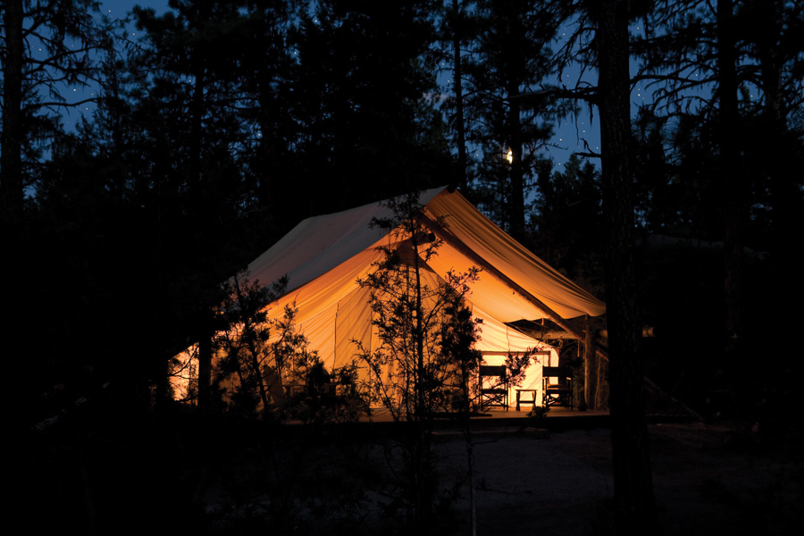 Threadesque I Want To Go Glamping