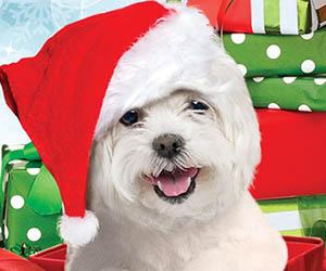 Ahorrar adelantando las compras de Navidad