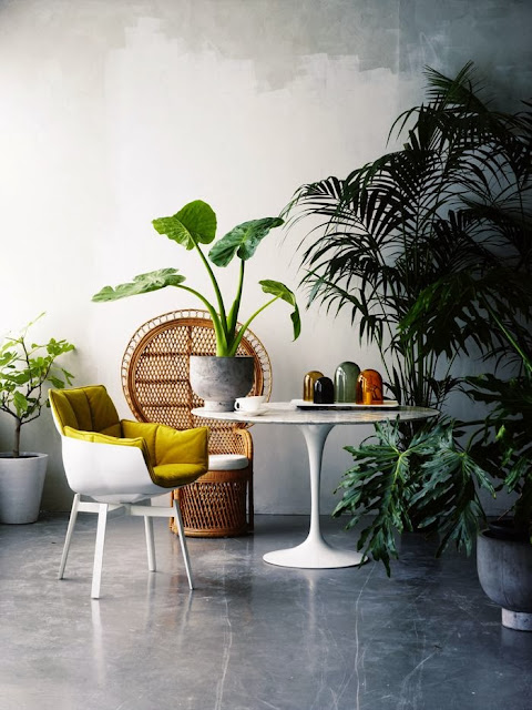 modern decor, minimal, chic, interior, decor, peacock chair, indoor plants, polished concrete, marble table, mid-century style
