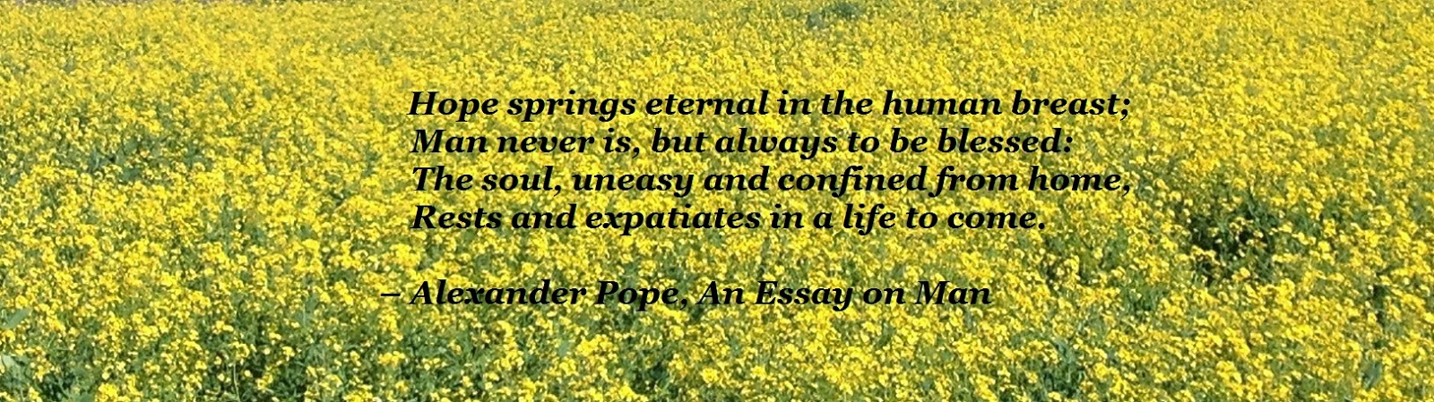 hope springs eternal essay The proverb is a quotation from pope's essay on man (1733) hope springs  eternal in the human breast: man never is, but always to be, blest the soul,  unesay.