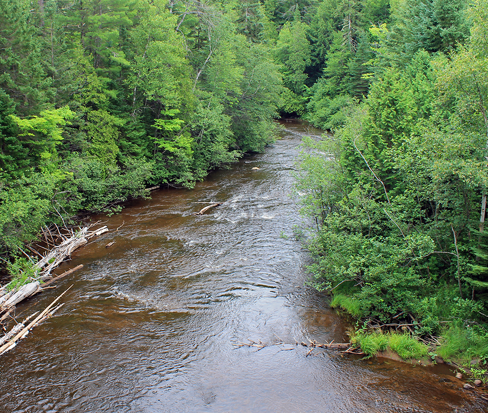 hemingway big two hearter river essay A summary of big two-hearted river: part i in ernest hemingway's in our time learn exactly what happened in this chapter, scene, or section of in our time and what it means.
