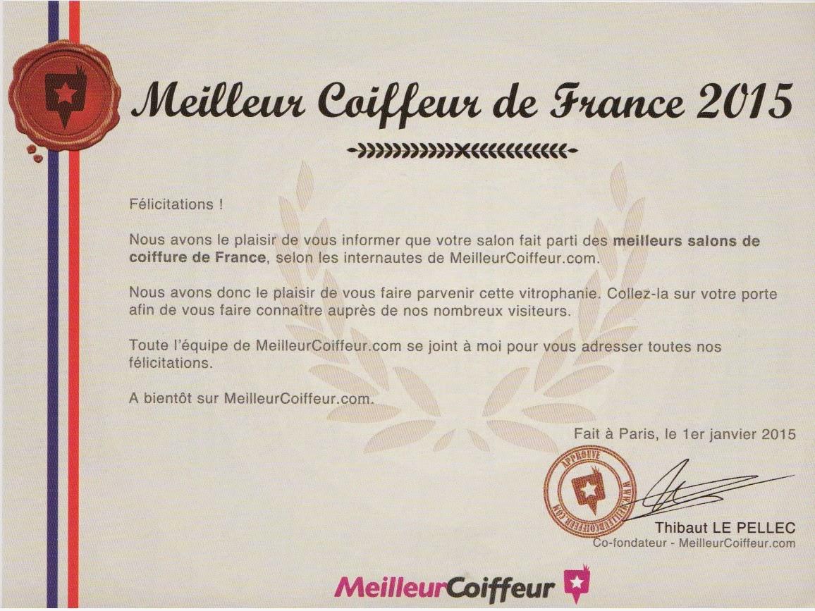 certificat meilleurcoiffeurcom 2015 reu au studio 54 salon de coiffure montpellier - Meilleur Coiffeur Coloriste Paris