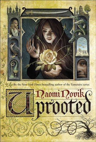 https://www.goodreads.com/book/show/22448211-uprooted