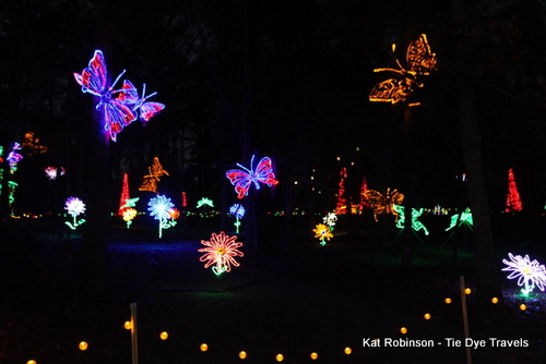 the butterfly garden is packed with flickering wings - Garvan Gardens Christmas Lights