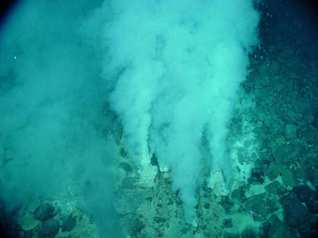 The Deep Sea Vents - Ecuador
