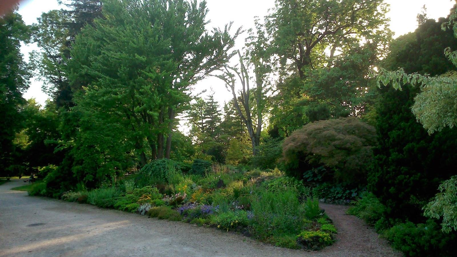 A la d couverte de notre patrimoine metz ville d 39 eau et de jardins for Jardin botanique metz