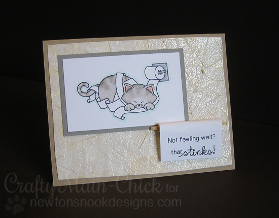 Naughty Cat Card with Toilet Paper by Crafty Math-Chick | Naughty Newton Stamp set by Newton's Nook Designs