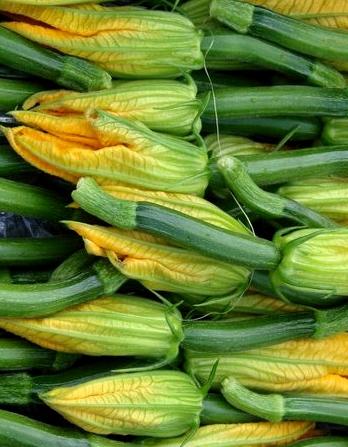 #1: involtini di zucchine, salmone e stracchino al profumo di erba cipollina