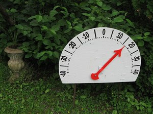 Big analog Thermometer with Picaxe