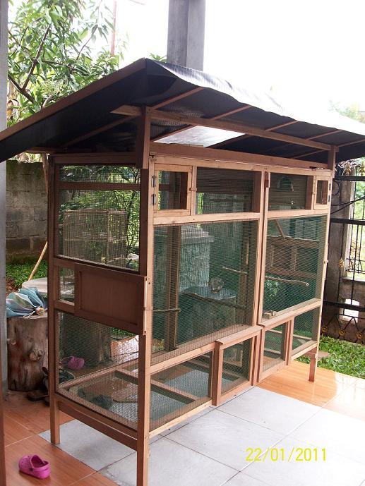tiara bird farm seputar penangkaran