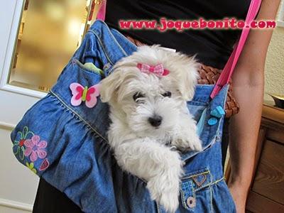 Bolso porta cachorro
