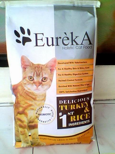 Makanan Yang Baik Untuk Kucing Your Title