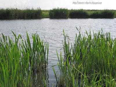реки,река Аксай