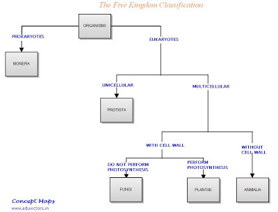 Five Kingdoms Classification