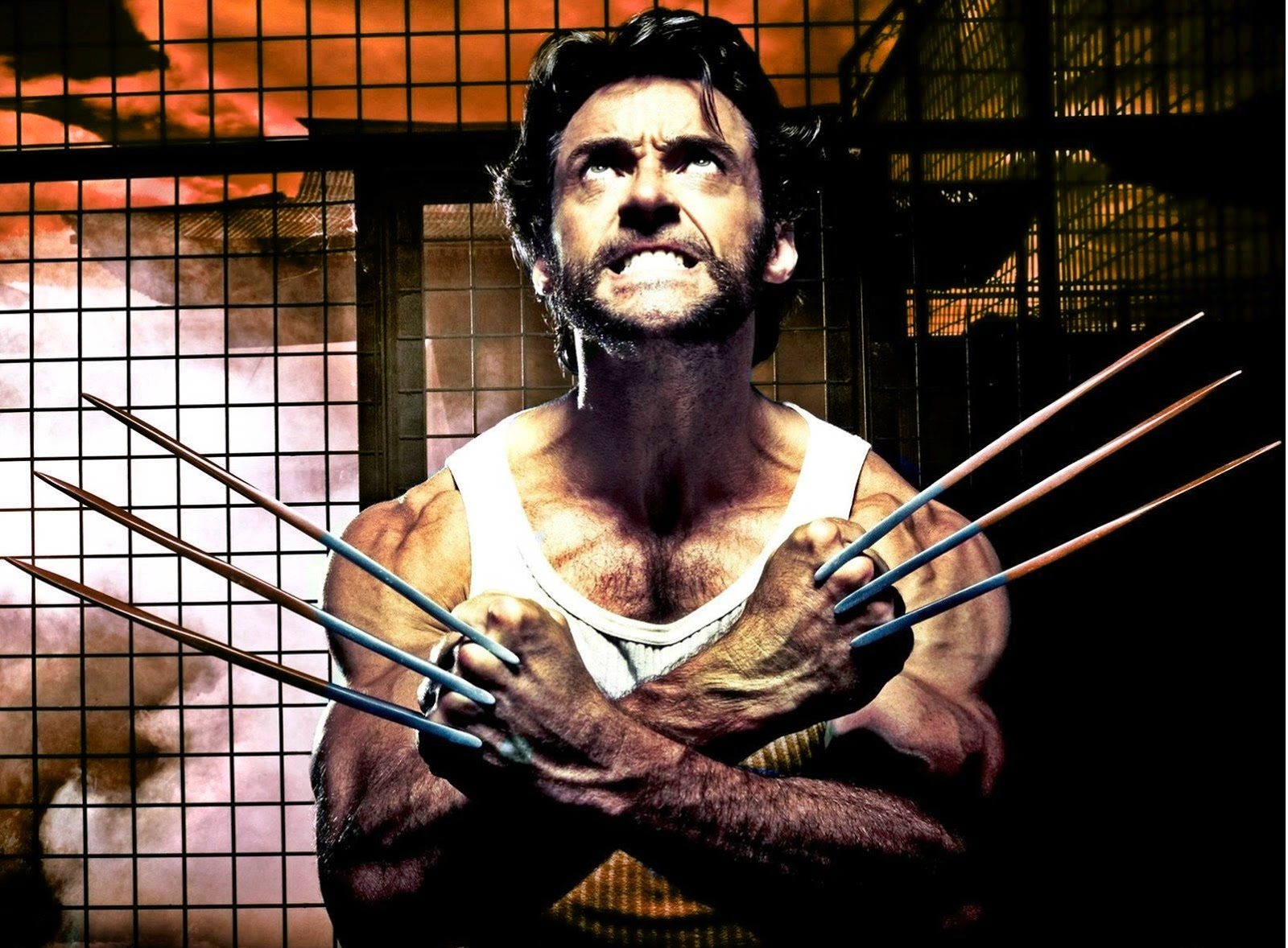 Hollywood Stars Hugh Jackman Wolverine Movie New Hd Wallpaper 2013