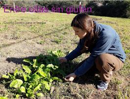 Recetas libres de Gluten