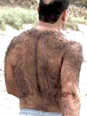 Image result for body hair