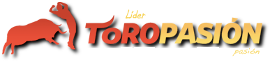 WEB ToroPasion