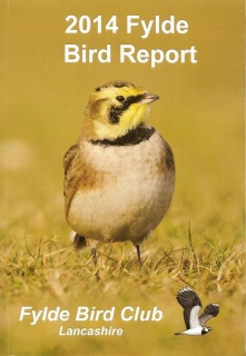 FYLDE BIRD REPORT