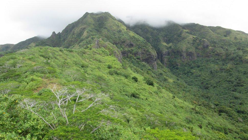 Mont Tearai - Panorama sur les montagnes de Moorea