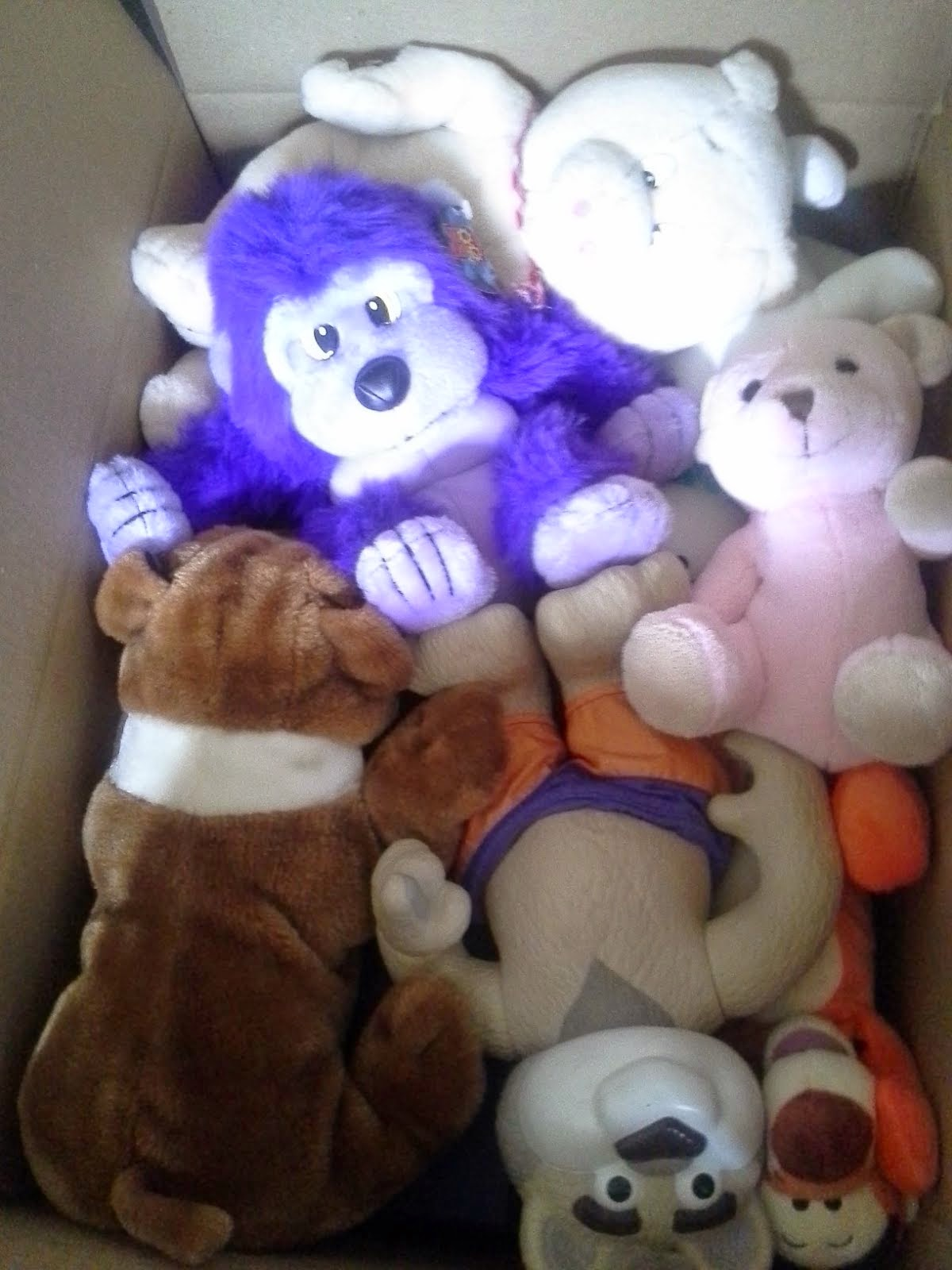 Stuffed Toys for Day Care Schools