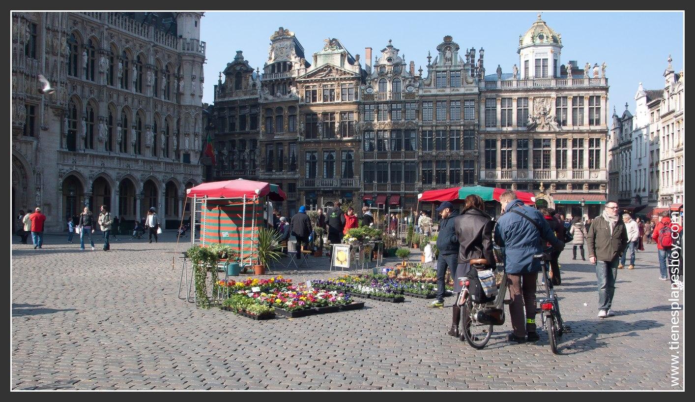 Grand Place Bruselas