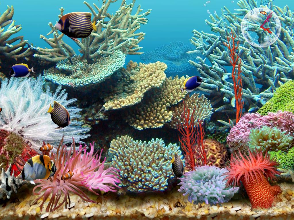 Fish aquarium screensaver - 3d Aquarium Screensaver Download Link