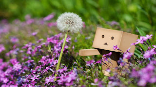 Danbo Between Purple Flowers and Dandelion HD Wallpaper