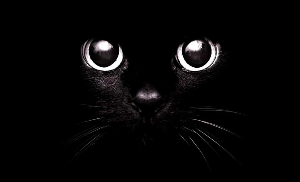 dark cute