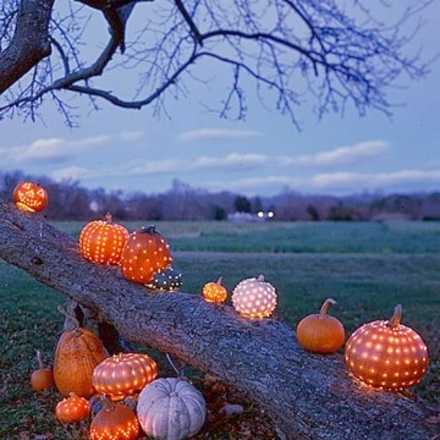 Celestial pumpkins, drilled pumpkin designs, Martha Stewart | Oyster & Pearl blog