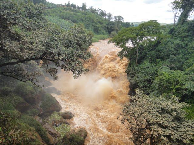 Kaiman in Rwanda