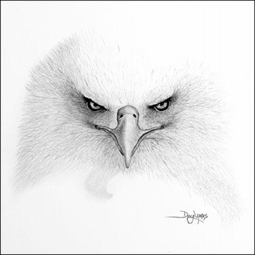صور لوحات فنية روعه جنان مرسومة رسم بالفم بقلم الرصاص ولا اروع 98414.jpg