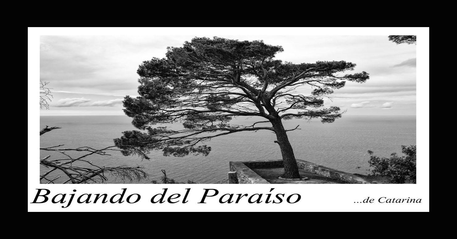 Bajando del Paraíso