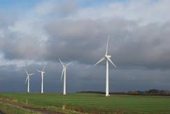 Windmills in November