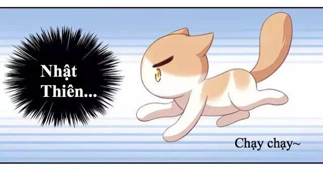 Dưới Móng Vuốt Mèo Chap 14 - Next Chap 15
