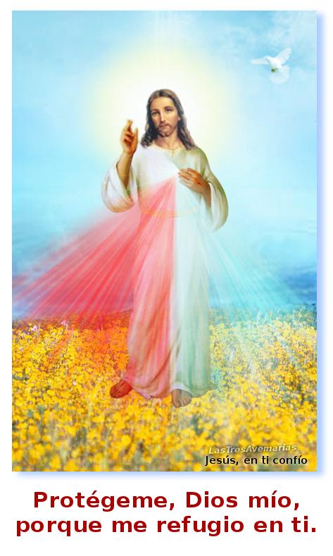 me refugio en ti divina misericordia