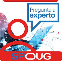 """Servicio """"Pregunta al Experto"""""""