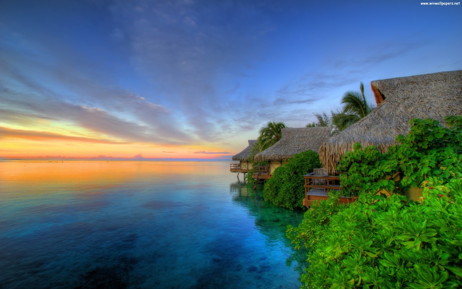 Tahiti - French Polynesia picture