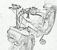 npp1.jpg