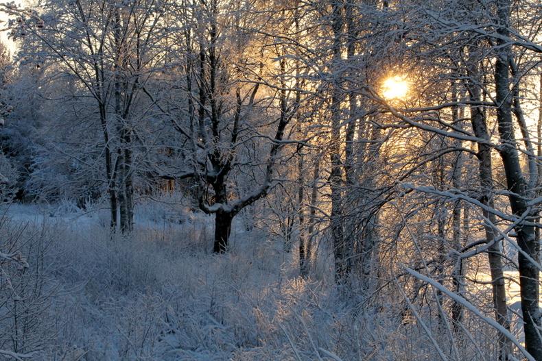 talvi lumi Joensuu