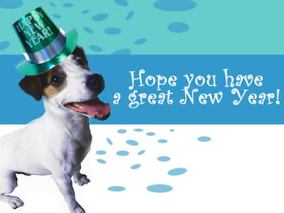 happy new year sydney, from mans best friend