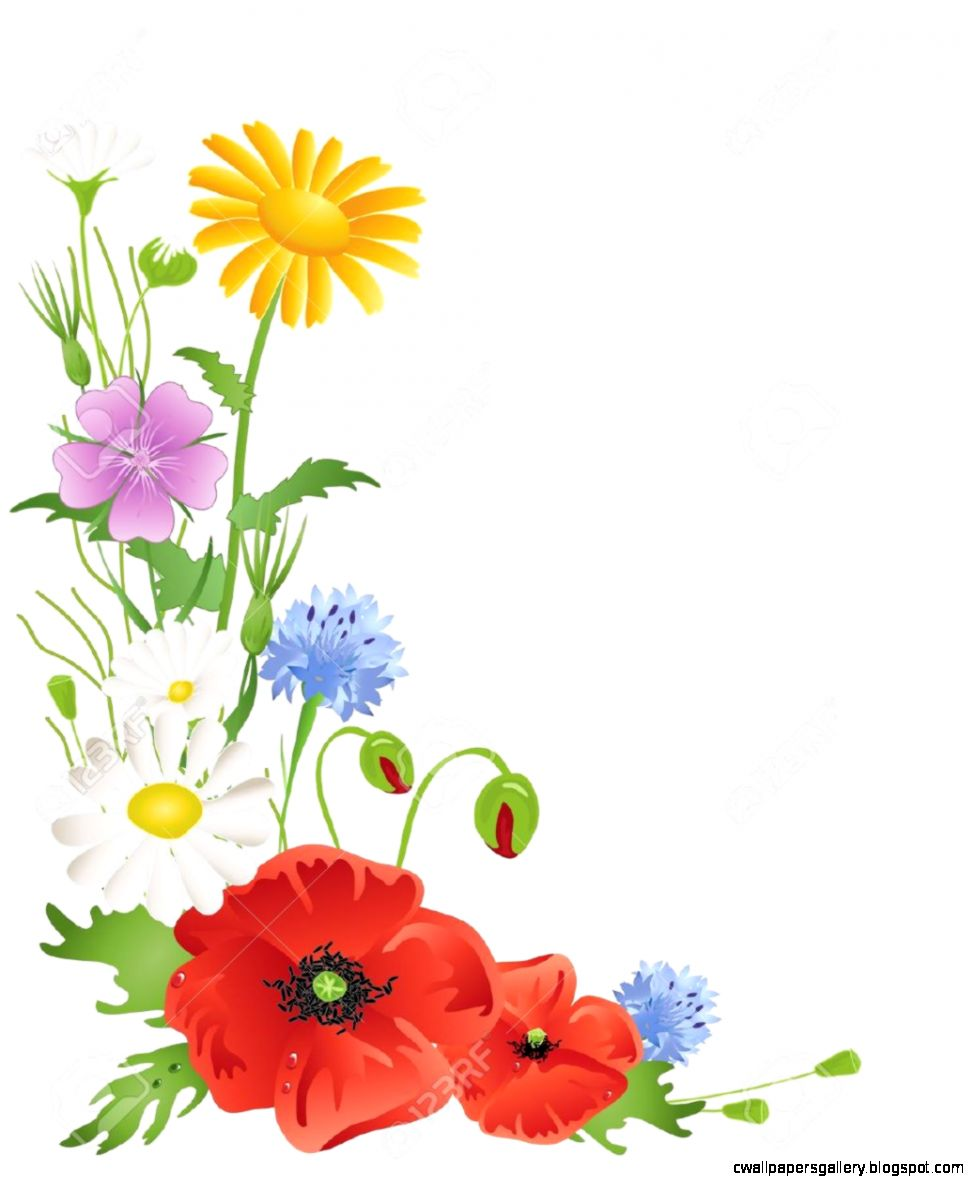 7925 Wildflower Stock Illustrations Cliparts And Royalty Free
