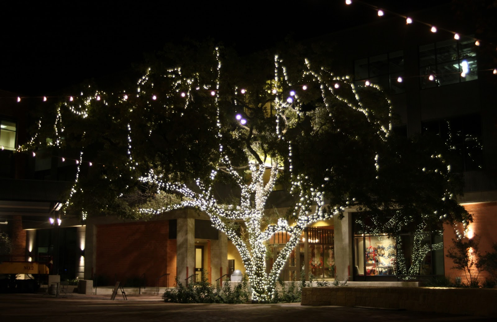 a look at the shopping area and the beautiful oak tree in the courtyard - Pearl Christmas Lights