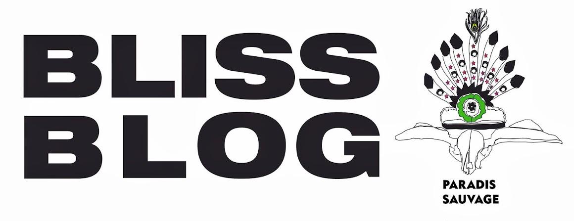 blissblog