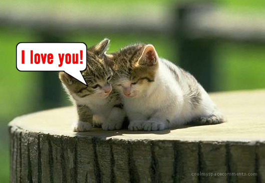 cute i love you mom quotes_15. Cute I Love You Icons.