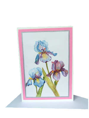 iris,flowers,trio,blue,spring,summer,fresh,card,greeting,minipainting