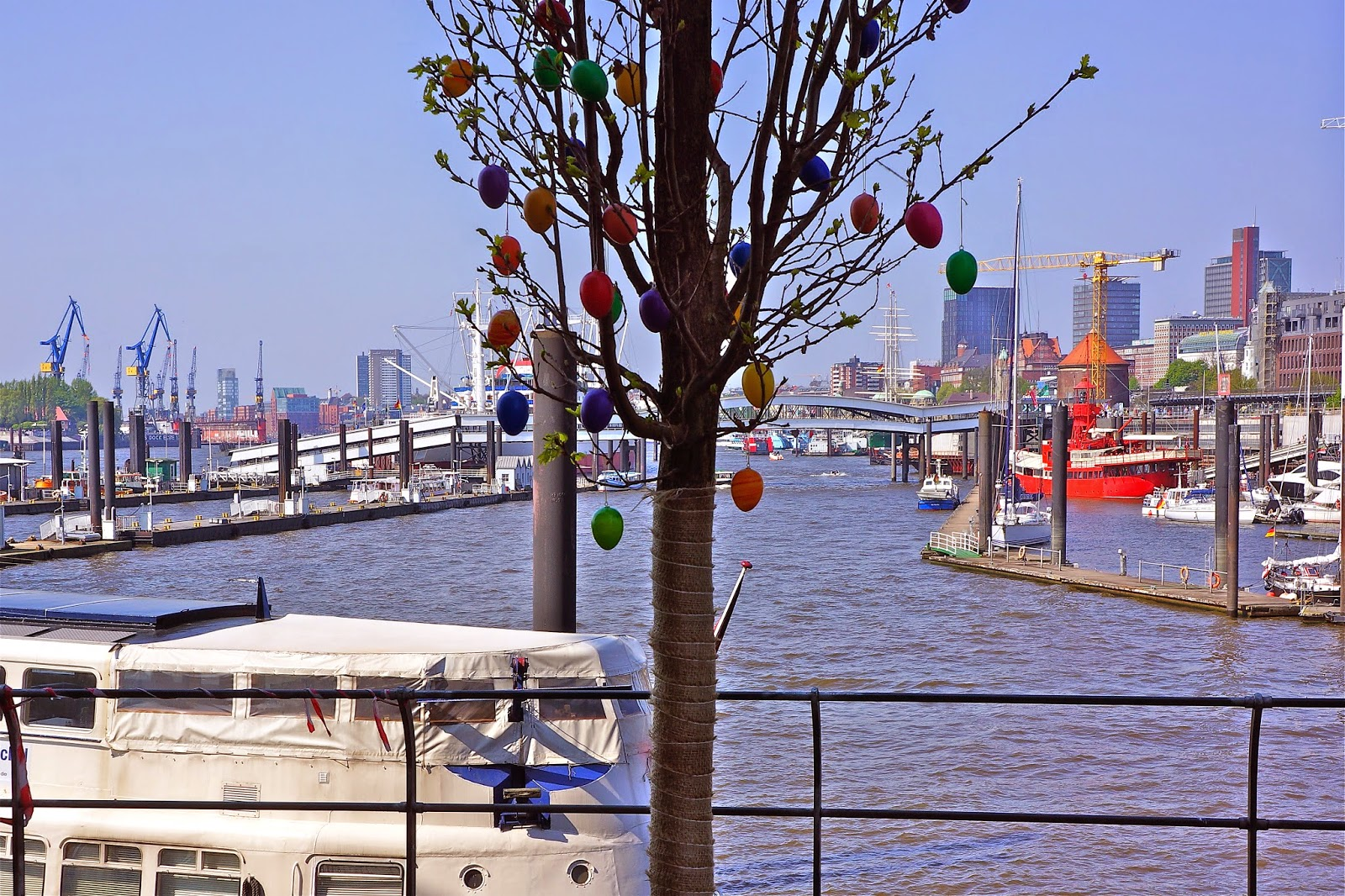 Picture of a tree decorated with Easter eggs. Shot in Hamburg, Germany.