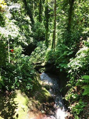 River in Goa Gajah Gianyar Bali