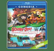 Scooby-Doo! and WWE: La Maldicion del Demonio Veloz (2016) Full HD BRRip 1080p Audio Dual Latino/Ingles 5.1